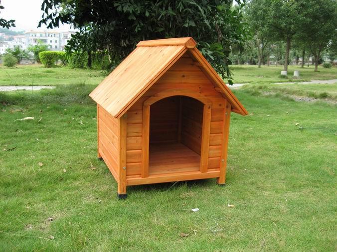 Výroba boudy pro psa